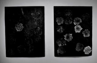 """White Rose"" and ""Solf Circle"" 50""x38"" ink, china pencil, candle wax"